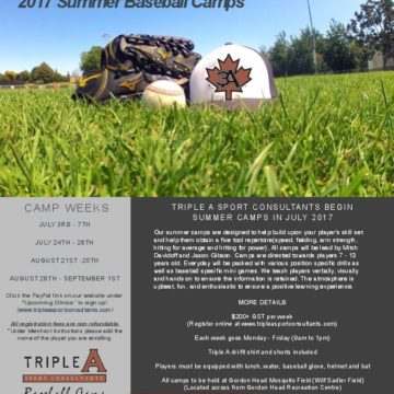 Summer Clinics With Triple A